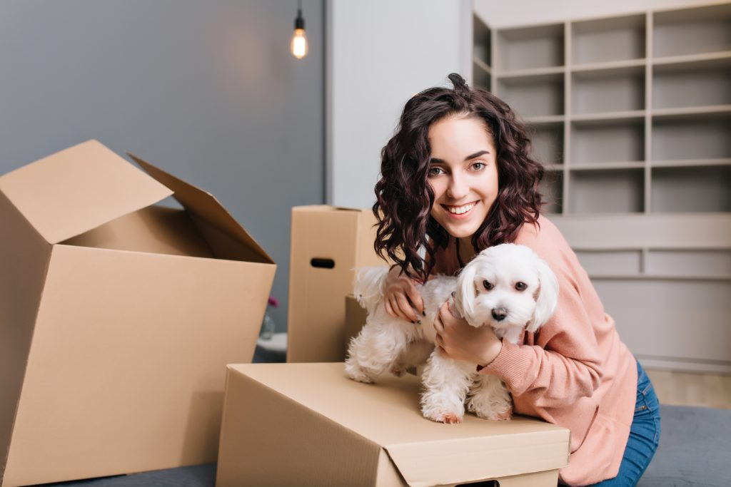 It's Moving Day – Caring for Your Pets on The Big Day