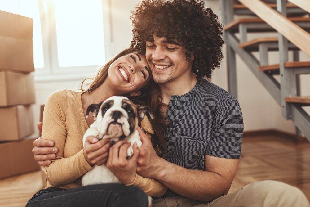 Keep Your Pet Safe on Moving Day